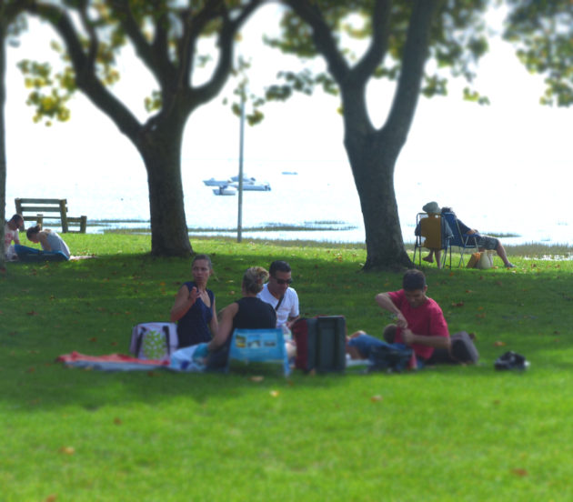 Détente dans l'herbe en face du Bassin d'Arcachon