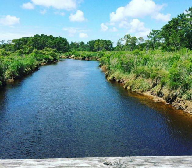 Canal des étangs de la réserve naturelle des prés salés d'Arès depuis la passerelle