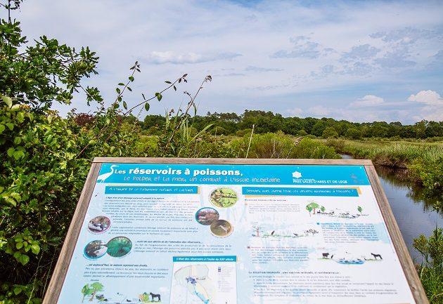 Panneau d'interprétation pour mieux comprendre la réserve naturelle des Prés Salés d'Arès-Lège Cap Ferret.