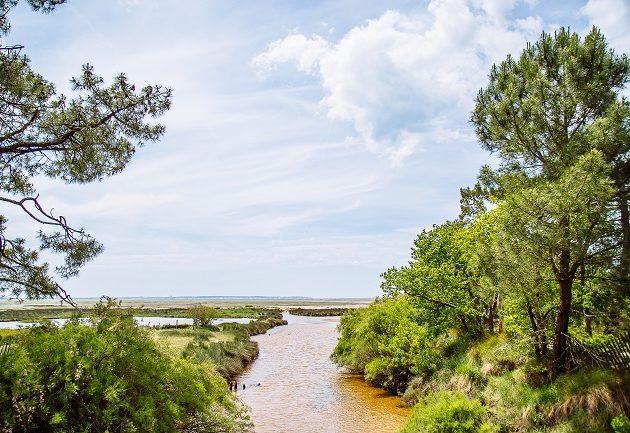 Rivière du Cirès qui coule sur le site naturel de St Brice, reconnaissable à son eau claire et à ses couleurs ocres.