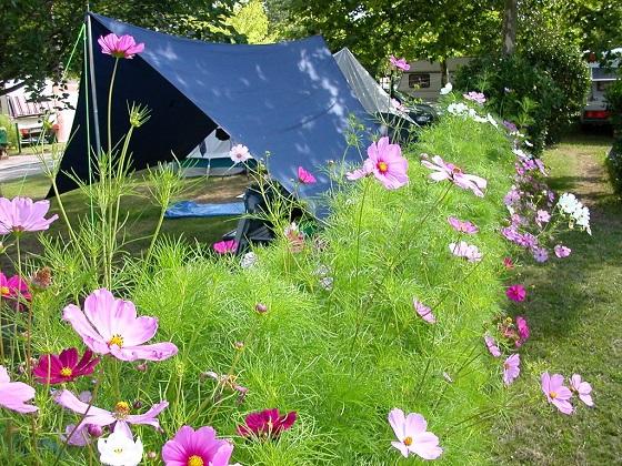 Tente sur un emplacement fleuri d'un camping d'Arès