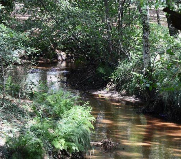 Petit ruisseau à Arès