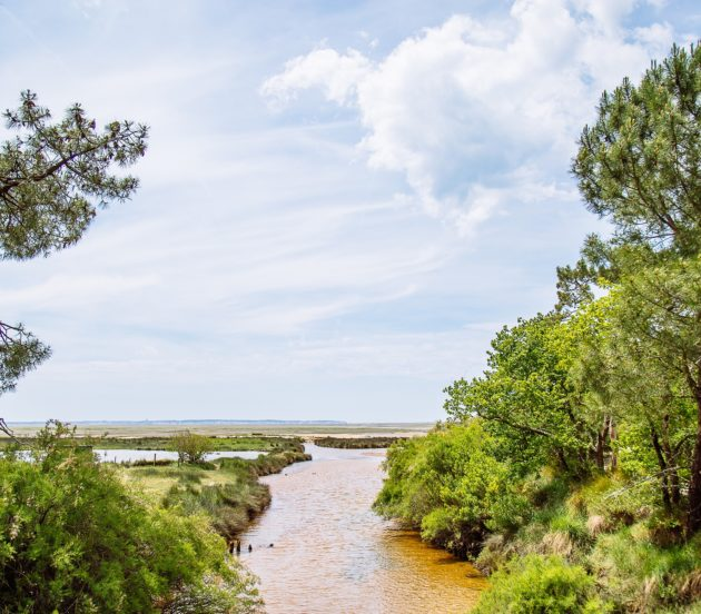 Rivière du cirès sur le site naturel de St Brice à Arès