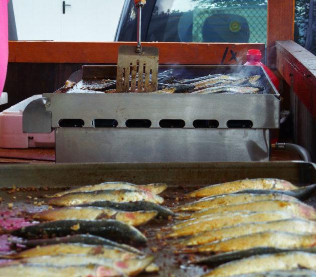 Sardines à Arès